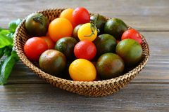 Fresh tomatoes in a wicker basket Stock Images