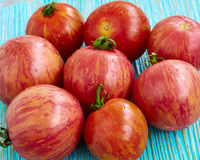 Fresh tomatoes. On wooden background Royalty Free Stock Image