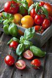 Fresh tomatoes in wooden box Royalty Free Stock Image