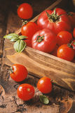 Fresh tomatoes in a wooden crate Stock Images