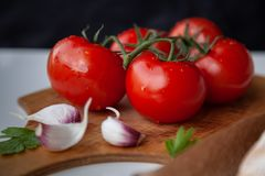 Fresh tomatoes on wooden desk with garlic royalty free stock photos