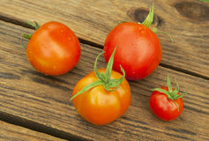 Fresh tomatoes on wooden table Royalty Free Stock Photo