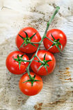 Fresh tomatoes on wrinkled paper. Bunch of fresh ripe red tomatoes on wrinkled used oven paper covered in stains royalty free stock photography