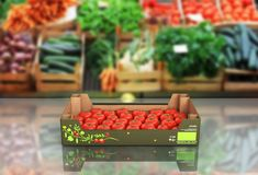 Fresh tomatos in box on market background with reflection 3d royalty free illustration