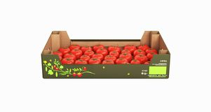 Fresh tomatos in box without shadow on white background 3d stock illustration