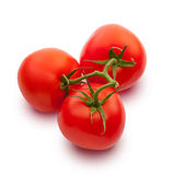 Fresh tomatos Stock Image