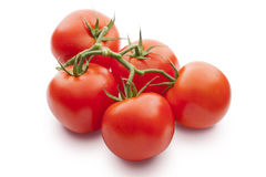Fresh tomatos Royalty Free Stock Image