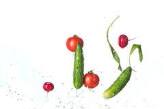 The fresh tomatos, cucumbers, radish in spray of water. Stock Image
