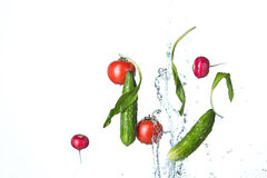The fresh tomatos, cucumbers, radish in spray of water. Royalty Free Stock Image