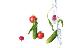 The fresh tomatos, cucumbers, radish in spray of water. Royalty Free Stock Images