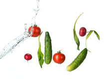 The fresh tomatos, cucumbers, radish in spray of water. Royalty Free Stock Photo