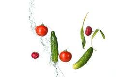 The fresh tomatos, cucumbers, radish in spray of water. Royalty Free Stock Image