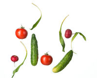 The fresh tomatos, cucumbers, radish in spray of water. Royalty Free Stock Photography