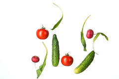 The fresh tomatos, cucumbers, radish in spray of water. Stock Images