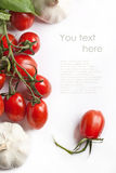 Fresh tomatos and garlic Royalty Free Stock Photography