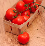 Fresh tomatos. Ripe tomatoes in basket close up, selective focus Royalty Free Stock Image