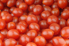 Fresh Tomberry (very small) Royalty Free Stock Image