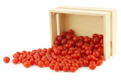 Fresh Tomberry (very small) tomatoes Royalty Free Stock Photo
