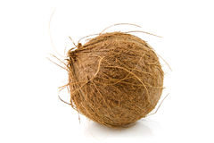Fresh topical coconut Royalty Free Stock Images