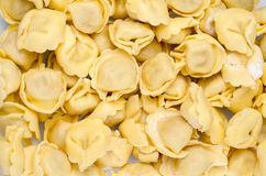 Fresh tortellini pasta Royalty Free Stock Photos