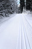 Fresh track for cross-country skiing Stock Images