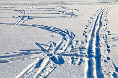 Fresh tracks in snowy field in winter day Stock Photo