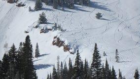Fresh Tracks in Utah Royalty Free Stock Photo