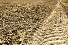 Fresh tractor track in the dirt Stock Photo