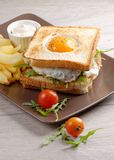 Fresh triple decker premium club sandwich Stock Images