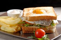 Fresh triple decker premium club sandwich Royalty Free Stock Images