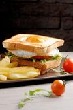 Fresh triple decker premium club sandwich Royalty Free Stock Photos