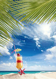 Fresh tropical cocktail on sunny beach in Maldives Royalty Free Stock Image