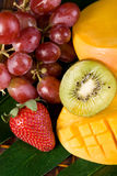 Fresh Tropical Fruit Stock Photography