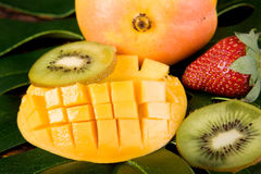 Fresh Tropical Fruit Royalty Free Stock Photos