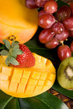 Fresh Tropical Fruit Royalty Free Stock Photo