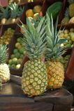 Fresh Tropical Fruit Bar Royalty Free Stock Photos