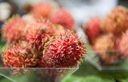 Fresh tropical fruit rambutan closeup with selected focus Stock Image