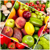 Fresh tropical fruits. Stock Images