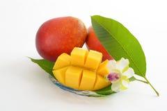 Fresh tropical fruits. Fresh fruits isolated on white background stock photo