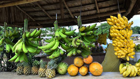 Fresh tropical fruits on market shelf Royalty Free Stock Photography