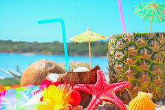 Fresh tropical fruits by the sea Stock Photos