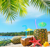 Fresh tropical fruits by the shore Stock Photography