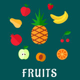 Fresh tropical and garden flat fruits set Royalty Free Stock Image