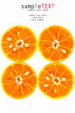 Fresh tropical orange Royalty Free Stock Photos