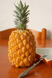 Fresh tropical pineapple. Fresh pineapple on the wooden table Stock Image