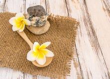 Fresh Tropical Plumeria in wooden spoon on burlap sack Royalty Free Stock Image