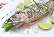 A fresh trout. With spices Stock Images