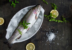 Fresh trout on ice with salad rocket, green peas, sea salt. Lemon on dark wooden table Royalty Free Stock Images