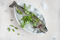 Fresh trout on ice with salad. Rocket, green peas, sea salt on white wooden table. Horisontal close-up Stock Photo