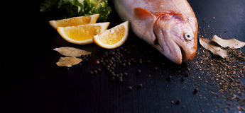 Fresh trout and ingredients to prepare fish dishes on black table. Fresh trout and ingredients to prepare fish dishes on a black table Royalty Free Stock Image
